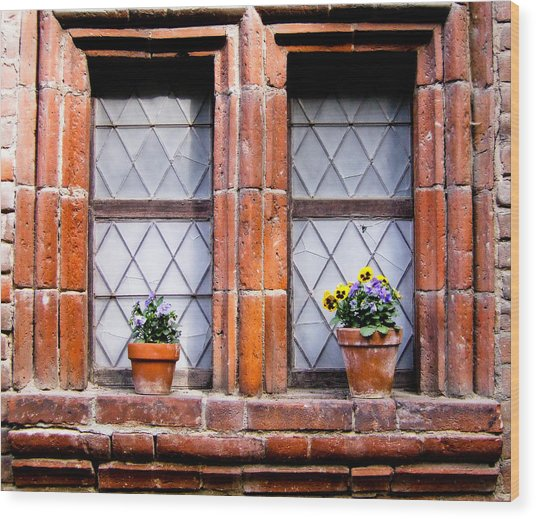 Window And Pots II Wood Print by Carl Jackson