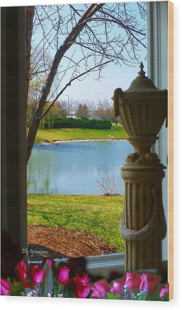 Window View Pond Wood Print
