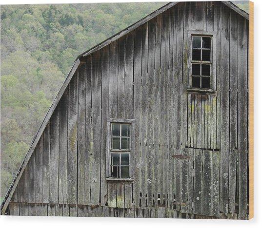 Windows Of The Past Wood Print