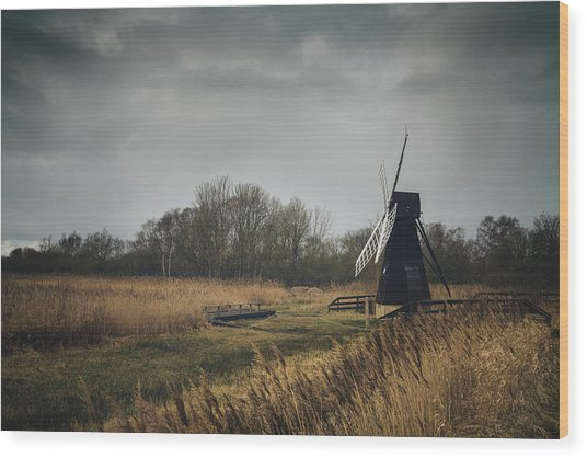 Windpump Wood Print