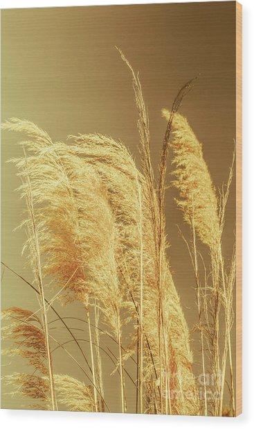 Windswept Autumn Brush Grass Wood Print