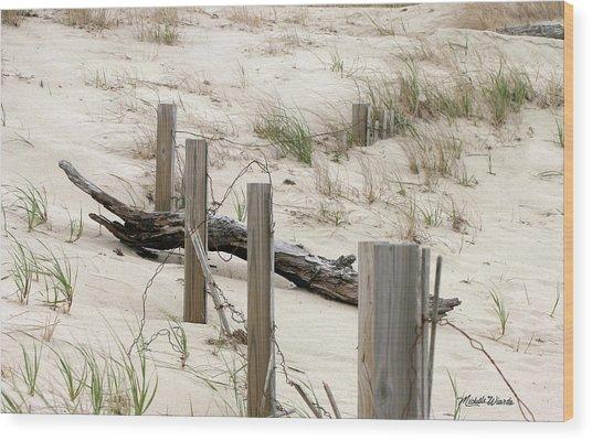 Windswept Beach Fence Cape Cod Massachusetts Wood Print