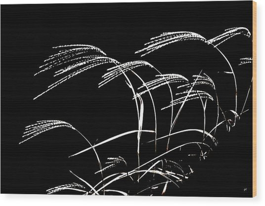 Windswept Grasses Wood Print