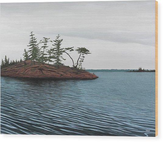 Windswept Island Georgian Bay Wood Print