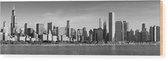 Windy City Morning Wood Print by Donald Schwartz