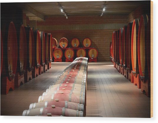 Wine Cellar In Montalcino Wood Print