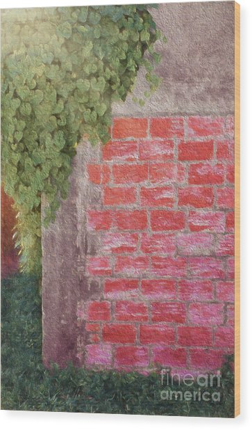 Wine Country Morning Wood Print by Darla Rae Norwood
