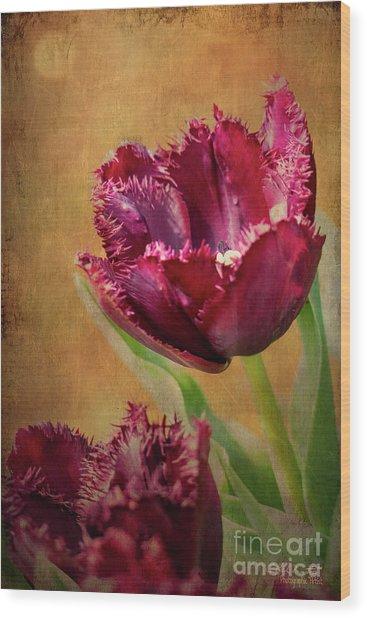 Wine Dark Tulips From My Garden Wood Print
