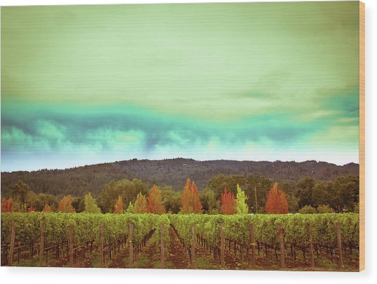 Wine In Time Wood Print