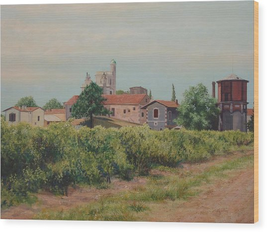 Winery In Provence Wood Print