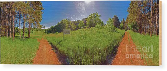 Wingate, Prairie, Pines Trail Wood Print
