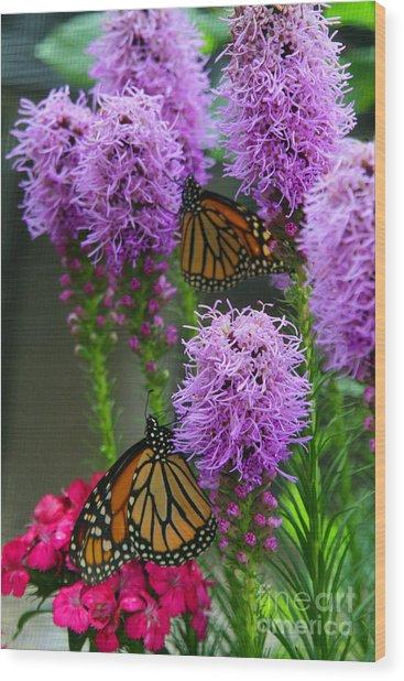 Winged Beauties Wood Print