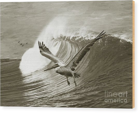 Wings And Waves Bw Wood Print