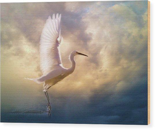 Wings Of Light Wood Print