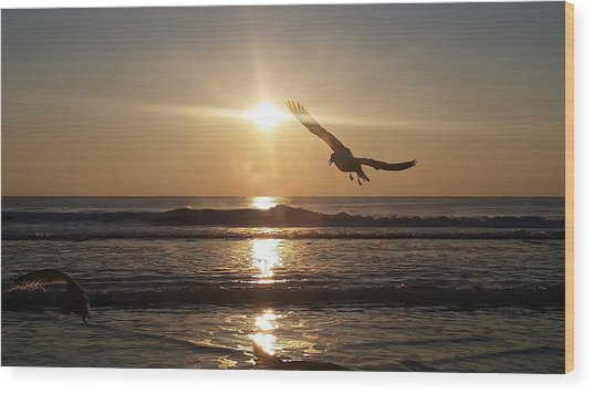 Wings Of Sunrise Wood Print