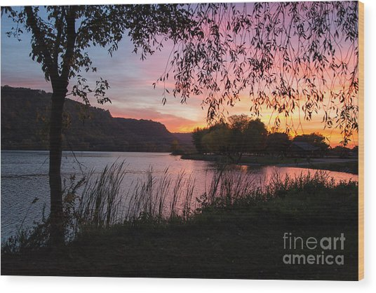 Wood Print featuring the photograph Winona Minnesota Pink Sunset With Branches by Kari Yearous