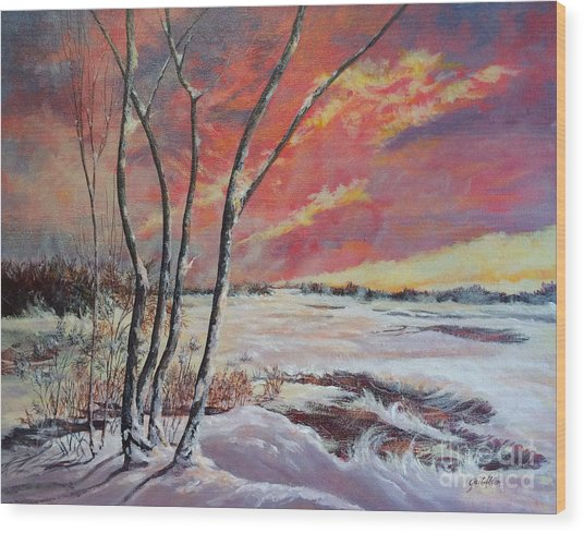 Winter Across The Lake  Wood Print