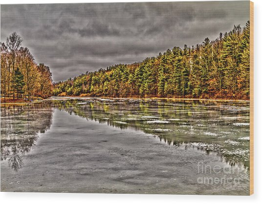 Winter At Pine Lake Wood Print