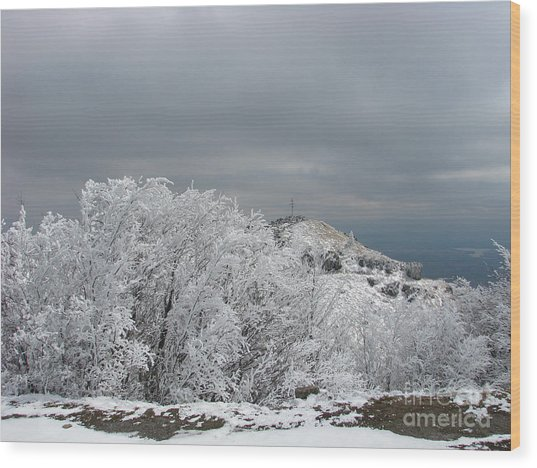 Winter At Shipka Wood Print