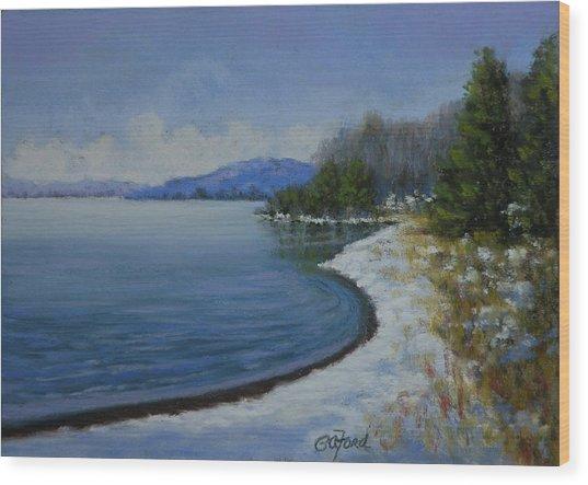 Winter At The Lake Wood Print by Paula Ann Ford