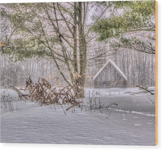 Winter At The Woods Wood Print