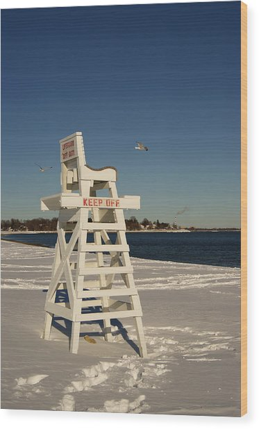 Winter Beach At Penfield  Wood Print