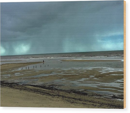 Wood Print featuring the photograph Winter Beach by Debbie Cundy
