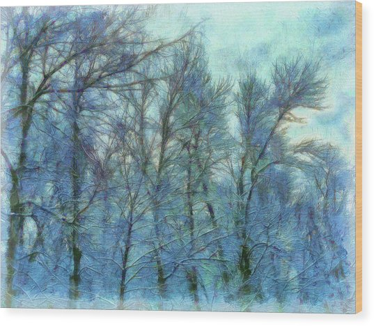 Winter Blue Forest Wood Print