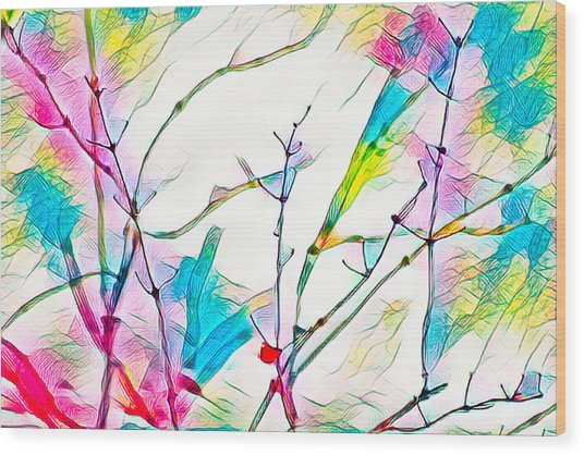 Winter Branch Colors Wood Print