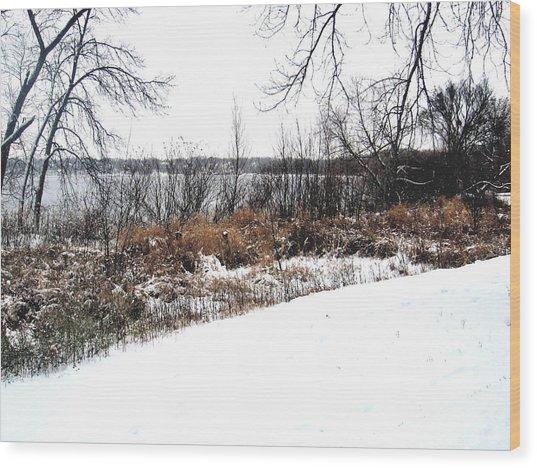 Winter By The Lake II Wood Print by David Ritsema