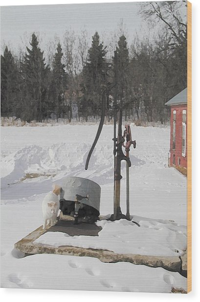 Winter Cat At The Pump Wood Print by Laurie With