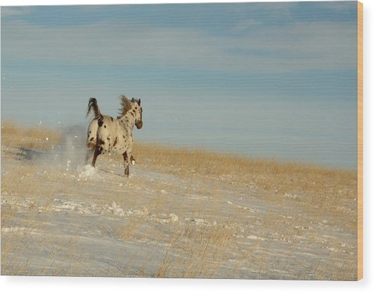 Winter Charger Wood Print