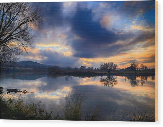 Winter Colors At Sunset Wood Print