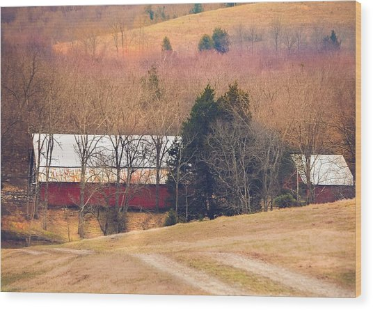 Winter Day On A Tennessee Farm Wood Print