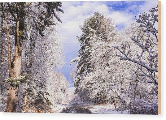 Winter Drive Wood Print