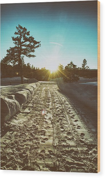 Winter Driveway Sunset Wood Print