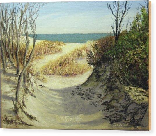 Winter Dunes Wood Print by Joan Swanson