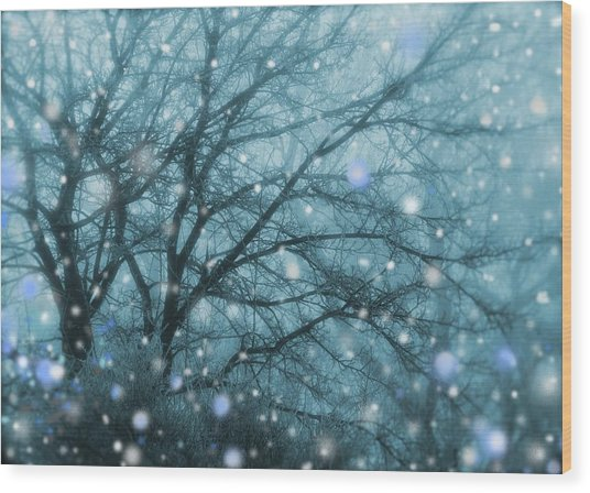 Winter Evening Snowfall Wood Print