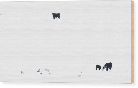 Winter, Feed Zone Wood Print