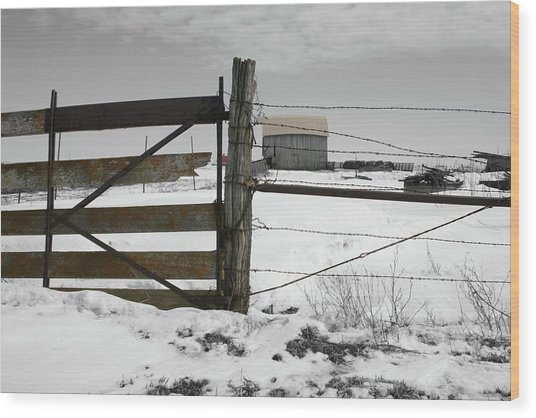Winter Fence Farm Wood Print