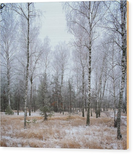 Wood Print featuring the photograph Winter Forest. Shchymel, 2014. by Andriy Maykovskyi