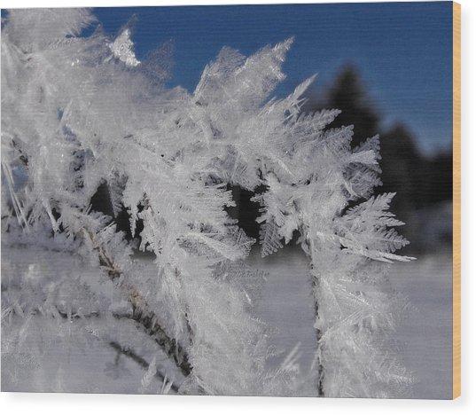 Winter Frost 6 Wood Print