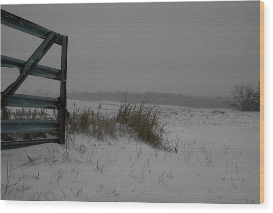 Wood Print featuring the photograph Winter Gate by Dylan Punke