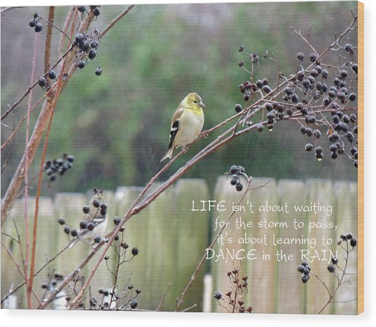 Winter Goldfinch In The Rain With Quotation Wood Print