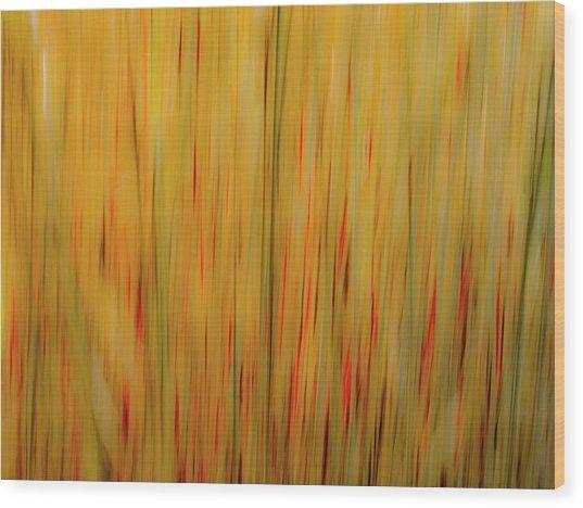 Winter Grasses #1 Wood Print