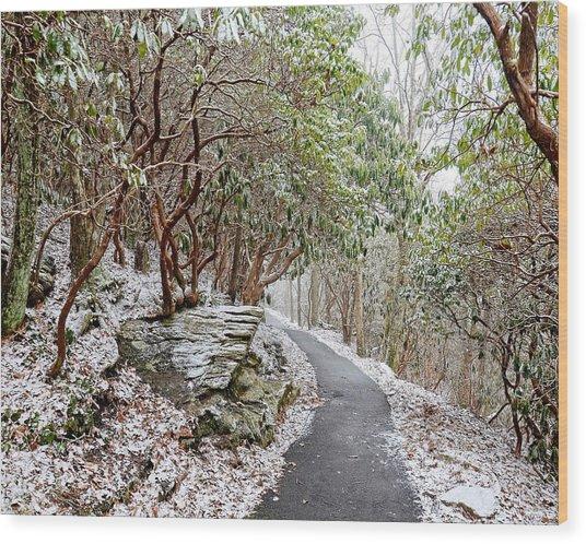 Winter Hiking Trail Wood Print