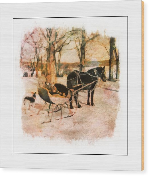 Winter Horse Sled Wood Print