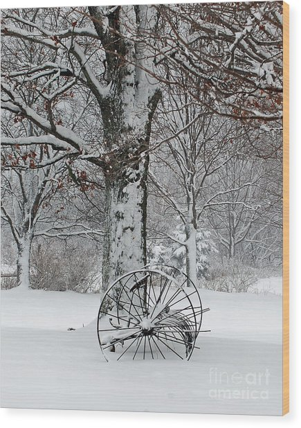 Winter Hush Wood Print by Diane E Berry