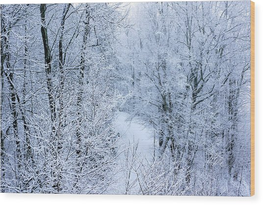 Winter Ice Storm Wood Print