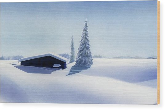 Winter In Austria Wood Print
